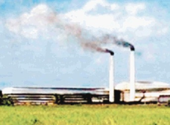 Cristobal Colon Sugar Mill Exceeds the Goal